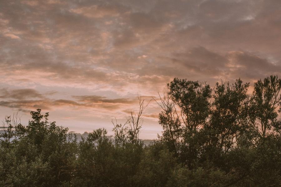 landskap,landscape,bröllopsfotograf,skåne,golden,hour,sunset,lomma