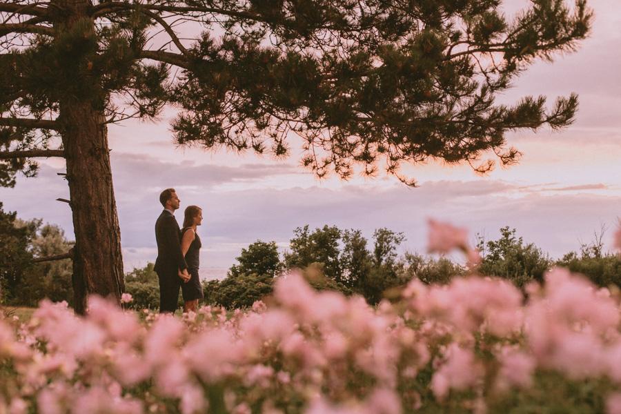 flowers,blommor,bröllopsfotograf,skåne,golden,hour,sunset,lomma